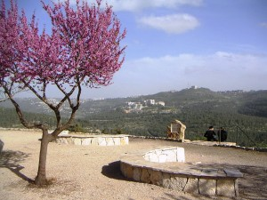 An Eastward view from the Sataf; Hadassa Ein Karem