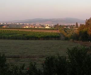 Ramat Yisha, looking to the East